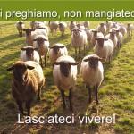volantino_pasqua_200913