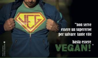 one veg show 6 maggio